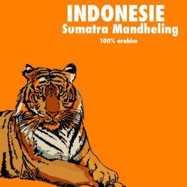 Café Indonésie Mandheling Bio