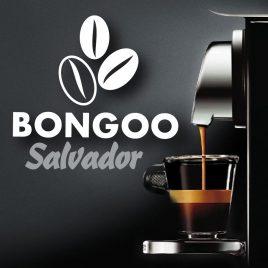capsules Nespresso Salvador