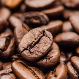 La fraîcheur du café en grain