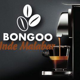 Capsules Compatibles Nespresso Inde Malabar