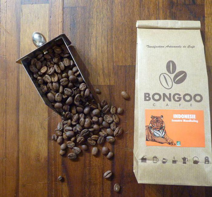 café indonésie Bio